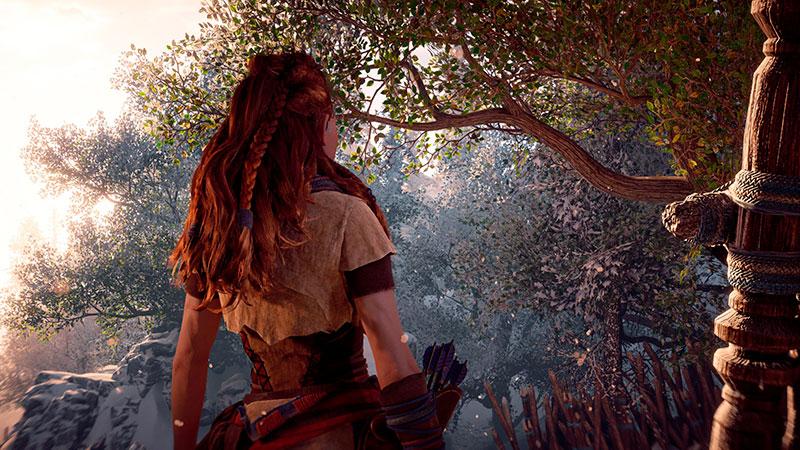 Aloy selkpäin kameraan Horizon Zero Dawn PC -pelissä.